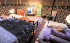 Campden dog friendly Yurts Cotswolds Glamping with pets